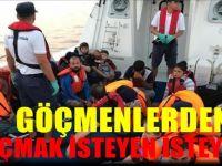 Türkiye'deki Düzensiz Göçmen Sayısı Yüzde 37 Arttı
