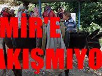 İzmir'i rezil eden görüntü : yetkililerden ses yok