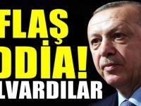 AKP'li yazardan Erdoğan iddiası