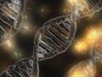 Bilim Adamları, CRISPR ile DNA Yerine RNA Düzenlenebilecek