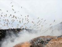 Dünya Bankası: 'Katı Atıklar 30 Yılda Yüzde 70 Artacak'