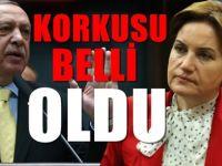 'İYİ Parti, AKP'ye destek verecek'