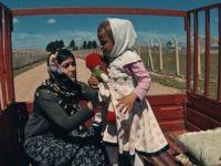 Yönetmen Altun, Savaşın Acı Yüzünü Kısa Filmlerle Anlatıyor