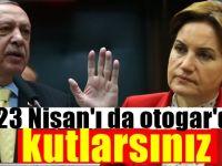 Meral Akşener'den AKP'ye resepsiyon tepkisi