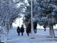 Kar Yağışı Yurt Genelinde Etkisini Gösteriyor