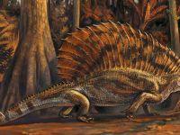 Abd'de 300 Milyon Yıllık Otobur Sürüngen Fosili Bulundu