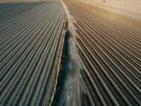 'Türkiye Yılda 750 Milyon Ton Toprak Kaybediyor'