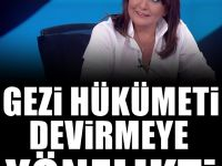 Sevilay Yılman: Gezi  hükümeti devirmeye dönük derin bir operasyon