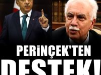 Erdoğan'ın kararına Perinçek yorumu : Yerinde bir karar