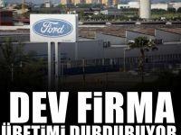 Dev Firma fabrikasını kapatıyor