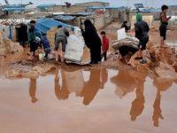 Selin Vurduğu Suriyeliler Yardım Bekliyor