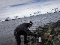'Beyaz Kıta' Antarktika'nın Katı Kuralları
