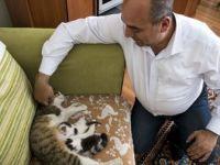 Doğumunu Yaptırdığı Kedi ile Yavrularını Sahiplendi