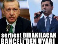Bahçeli endişelerini Erdoğan'a aktardı: Muhalefet bizi tefe koyar!
