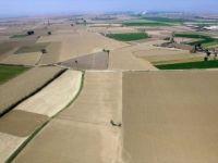 Ege Bölgesi'nin Kullanılmayan Arazileri Tarıma Kazandırılıyor