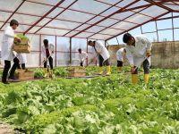 Okulda Çiftçiliği Öğrenip Yöre Halkına Destek Oluyorlar