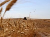 Tarım ve Ormancılığın 25 Yıllık Yol Haritası Oluşturulacak