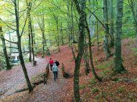 Milli Parklara Ziyaretçi Akını