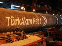 Moldova TürkAkım'dan Gaz Almak İstiyor