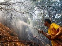 İzmir'deki Orman Yangınında Soğutma Çalışmaları Devam Ediyor