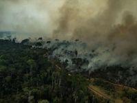 'Dünyanın Akciğerleri' Amazonlar Yanıyor