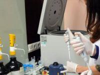 'Lenfomada İmmünoterapi ve Doğru İlaçların Kullanılmasıyla Tedavi Başarısı Artıyor'