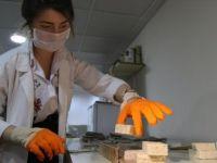 Şanlıurfa Mutfağını Vazgeçilmezi İsottan Sabun Yapıldı