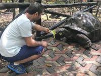 Dev Kaplumbağalarıyla Ünlü Eski Köle Adası: Changuu Adası