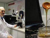 Kanser Hücrelerinin Yeni Silahı 'Siyah Bal'