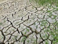 DSÖ: 'İklim Değişikliği 21'inci Yüzyılda En Büyük Sağlık Tehdidi Olabilir'