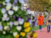 Son 9 Yılın En Sıcak Kasım Ayı Yaşandı