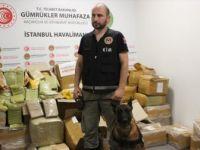 İstanbul Havalimanında 1 Ton 745 Kilogram Uyuşturucu Ele Geçirildi