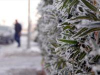 Kalp Hastaları Soğuk ve Rüzgarlı Havalarda Dikkatli Olmalı