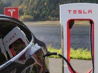 Tesla, Almanya'da 92 Hektarlık Ormanı Yok Edecek