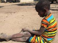 İsraf Edilen 1,3 Milyar Ton Gıda 821 Milyon Aç İnsanı Doyurabilir