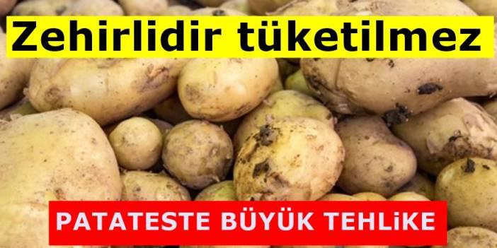 Uzmanlar uyardı Filizlenmiş patatesi sakın yemeyin! Eğer yerseniz...