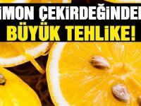Limonun Çekirdeğini Mutlaka Ayıklayın Verdiği Zarara İnanamazsınız...