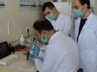 Kısa Sürede Çok Sayıda Analiz Yapabilecek Kovid-19 Test Kiti Geliştirildi