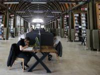 Kütüphaneler Kapılarını Yeniden Açtı
