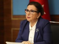 Ticaret Bakanı Pekcan: 'Habur ve Gürbulak Kapıları Açıldı'