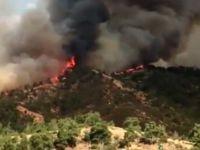 Güney Kıbrıs alev alev yanıyor!
