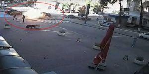 Ünlü gazeteci bombalı saldırıda öldürüldü!