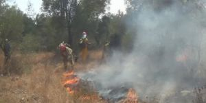 Muğla, Ula'da yangın büyümeye devam ediyor