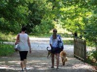Milli Parklar Ve Tabiat Parkları'na yoğun ziyaret