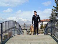 Halil İbrahim Aşar ve köpeği Hera Niğde Bor'da ilgi odağı oldu