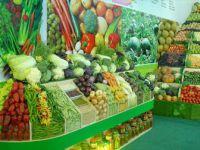 Günde 200 Gram Meyve Sebze Tüketimi Erken Ölüm Riskini Azaltıyor