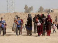 Musul'un Batısından Sivillerin Kamplara Tahliyesi Devam Ediyor