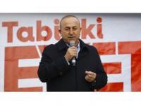 Dışişleri Bakanı Çavuşoğlu: Sosyal Demokrat İle Faşist Wilders Arasında Hiçbir Fark Yok