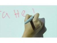 Bulgaristan'da Seçmenlere Kiril Alfabesiyle Dilekçe Yazma Zorunluluğu