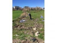 Kahta İlçe Belediyesi İlaçlama Çalışmalarına Başladı